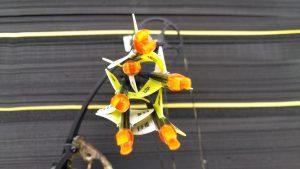 Groupement obtenu avec un arc compound de chasse et des lames (tir à 25 mètres)
